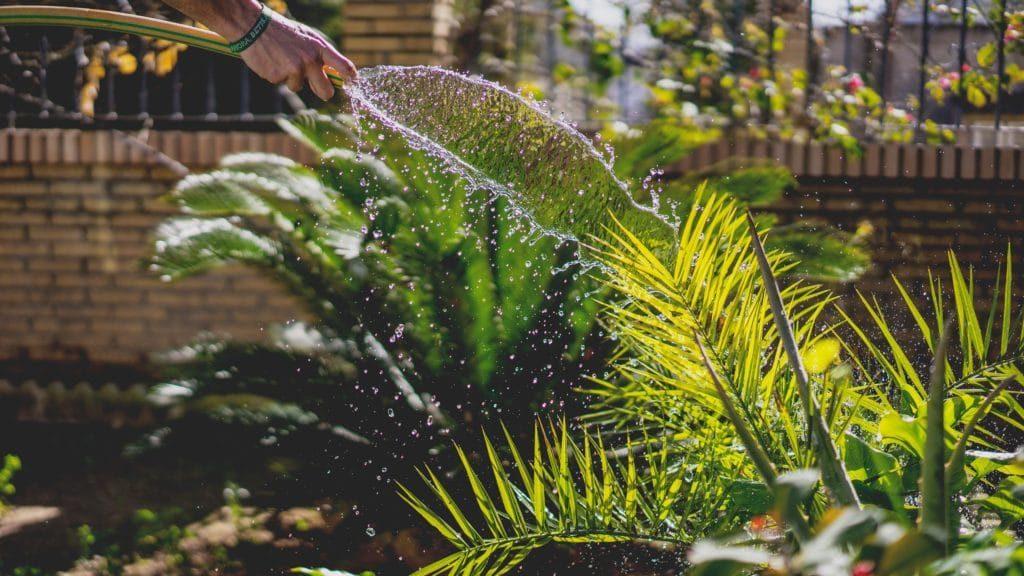 entretien jardin agen