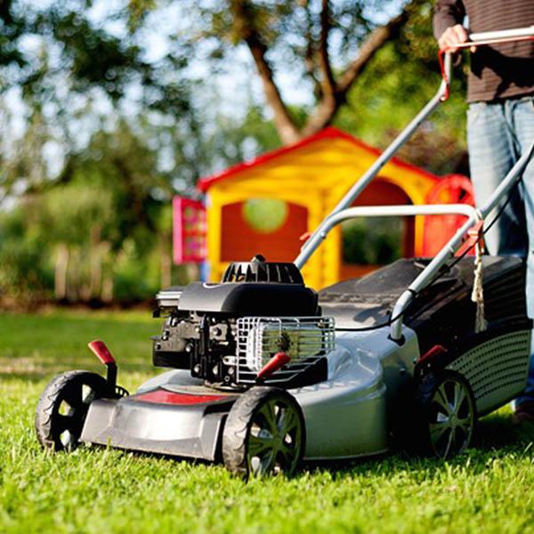 entretien pelouse agen