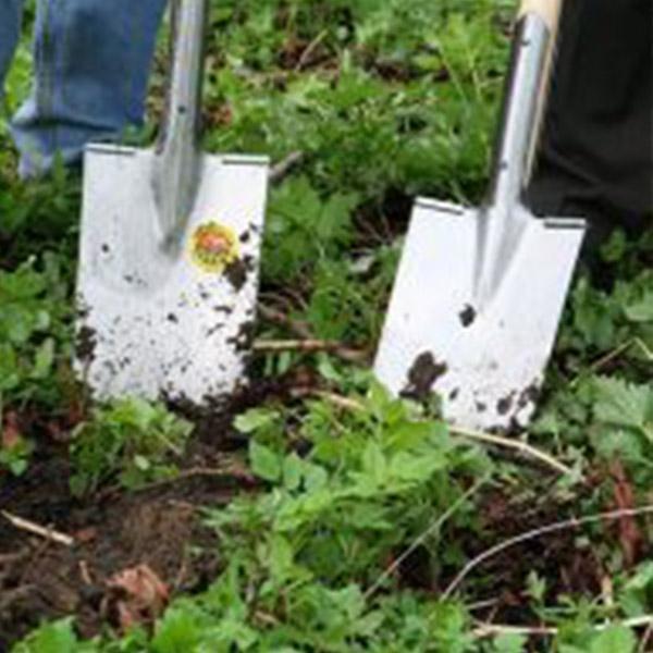 entretien pelouse villeneuve