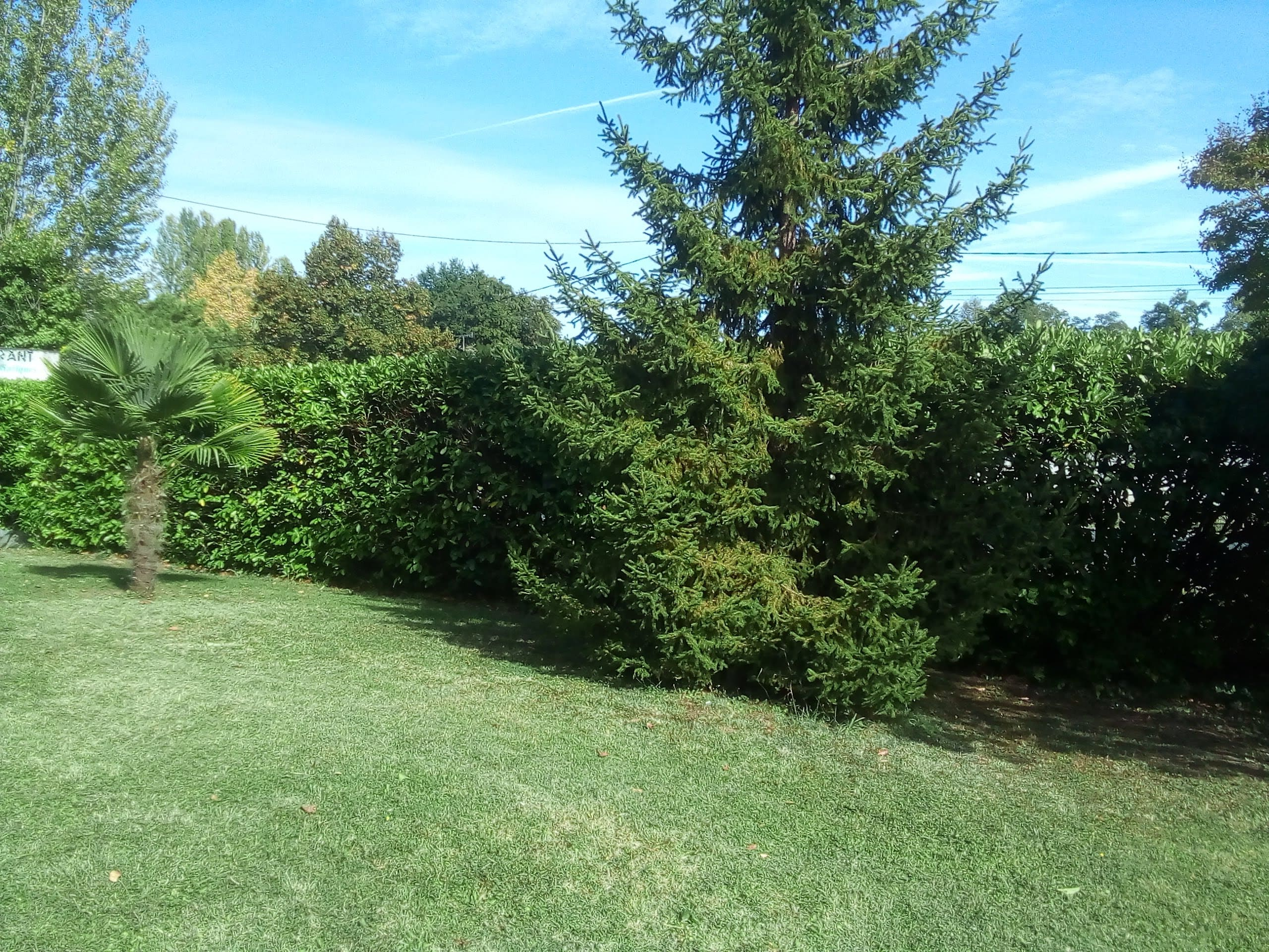 entretien jardin villeneuve